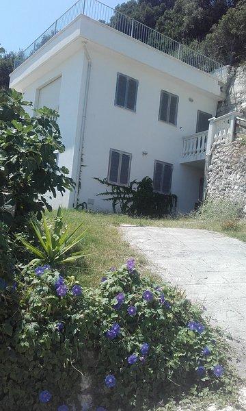 grande villa  vicino al mare, holiday rental in Vieste