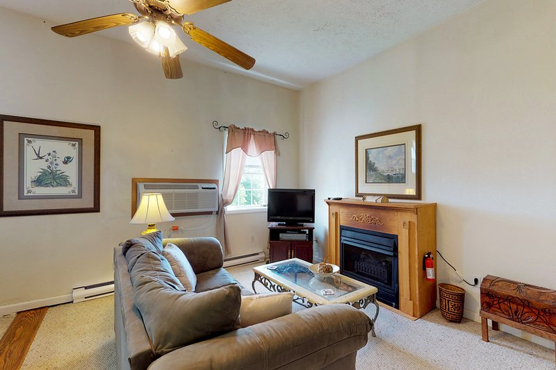 Tranquil mountain getaway w/ two jetted tubs, two fireplaces & free WiFi!, holiday rental in Deer Park