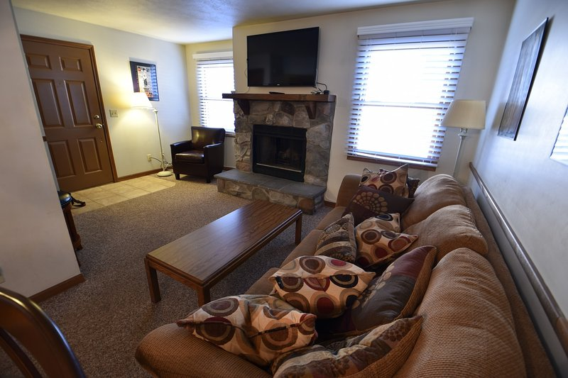 Condo at Unv of Notre Dame, Football weekends, short and long term stays, holiday rental in Niles