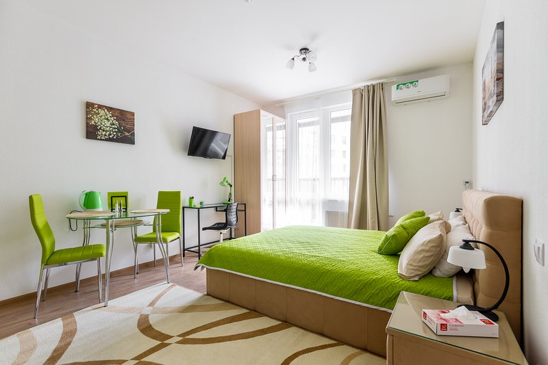 Simply Comfort. New Studio in City Center, vacation rental in Peterhof