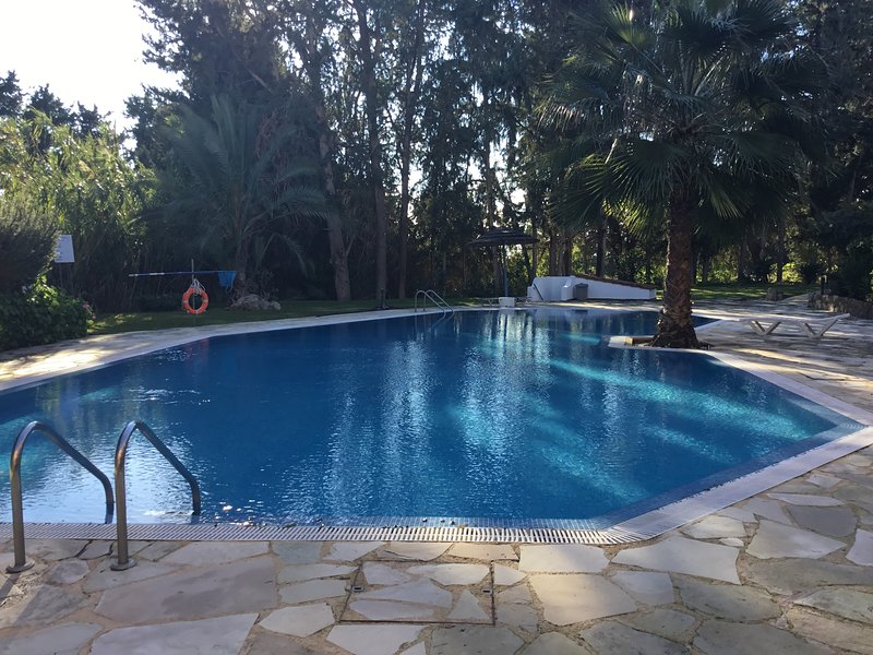 PARADISE GARDENS IV 1 BEDROOM APARTMENT WITH TERRACE, vacation rental in Paphos