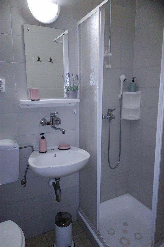 A1(2+1): bathroom with toilet