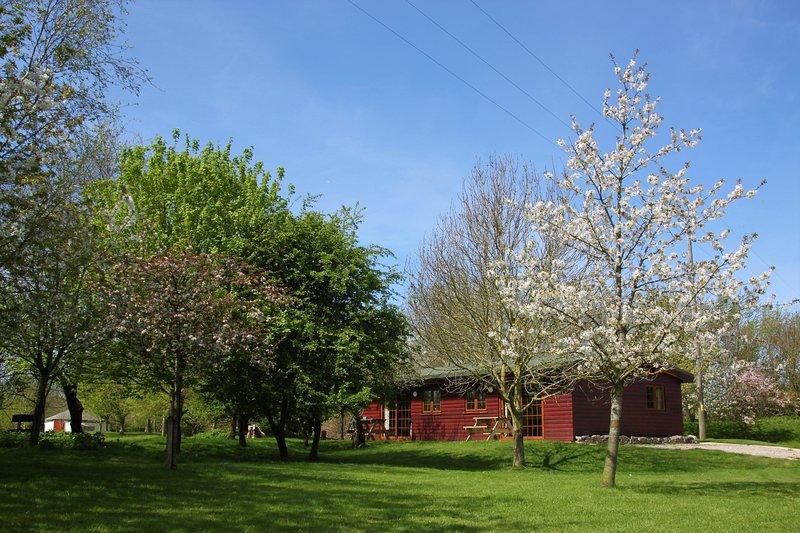Log cabin perfect for couples or families (Duckling), location de vacances à Highbridge