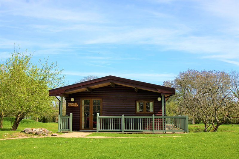 Spacious log cabin perfect for family/friend gatherings (Barn Owl), casa vacanza a Catcott