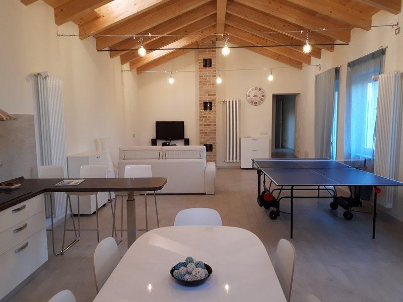 Livingroom 55 metros quadrados wirh cozinha totalmente equipada, sofá-cama, tv, dvd, hi-fi, ping pong