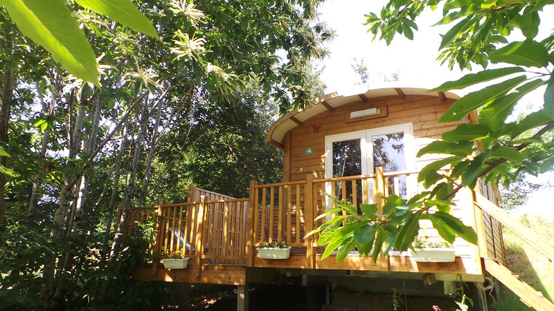 roulotte gigi, holiday rental in Coulgens