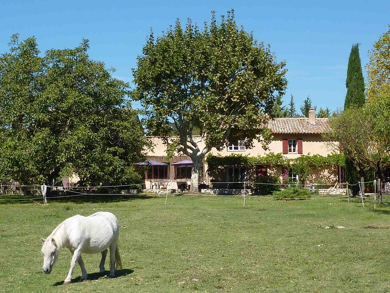 Mas provençal dans une propriété située dans la campagne aixoise, vacation rental in Aix-en-Provence