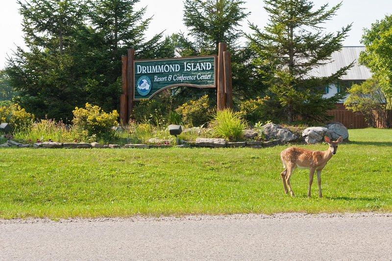Drummond Island Resort