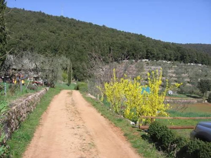 Bioagriturismo Ficareto, vacation rental in Sovicille