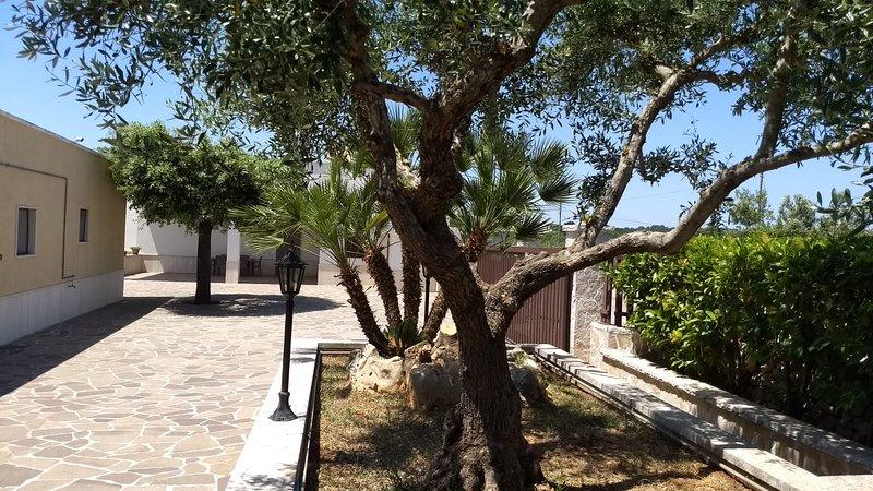 Beautiful house with garden & Wifi, alquiler vacacional en Pozzo La Chianca-Salamina-difesa
