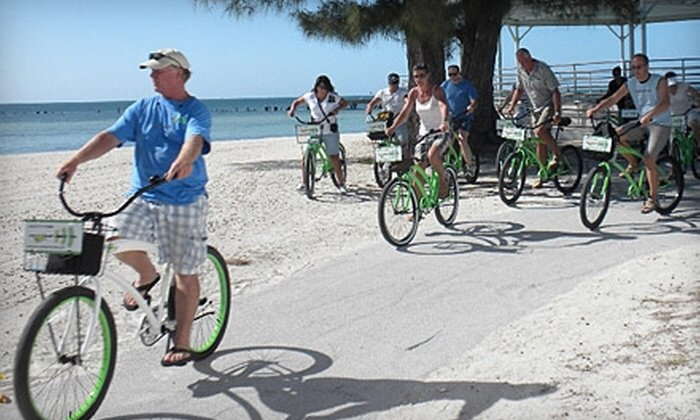 Le biciclette per adulti sono incluse nel noleggio