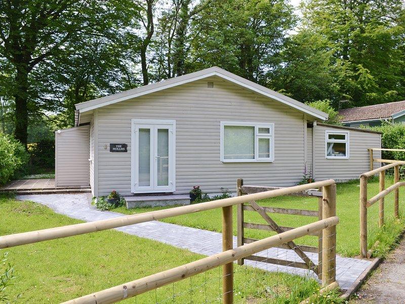 Hollies - W43107, vacation rental in Bradworthy