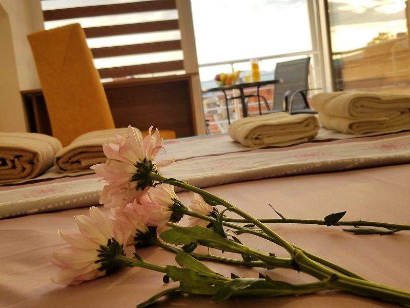 ASTRAION - SKY Apartments, holiday rental in Star Dojran