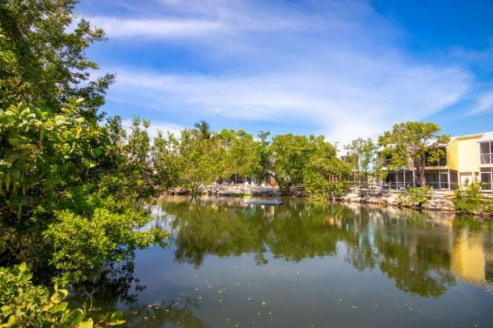 Seclude yourself in the nature of the Florida Keys