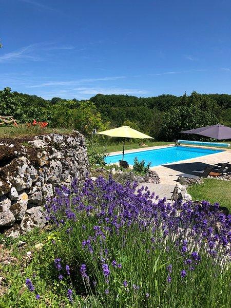 Rust, ruimte, prachtige natuur rond 4 pers 4**** vakantiehuis met privé zwembad, location de vacances à Thézac