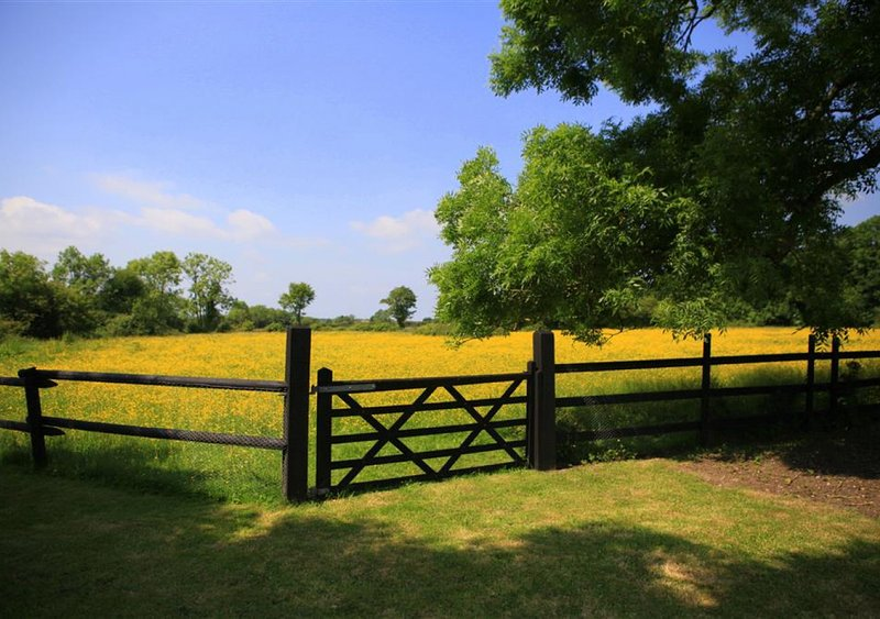 Barn Owl Retreat, Sibton, holiday rental in Heveningham
