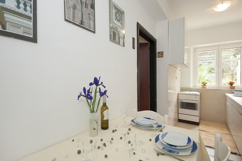 Apartments Kalajzic - Two Bedroom Apartment with Garden and Terrace(A2) (ST), vacation rental in Pucisce