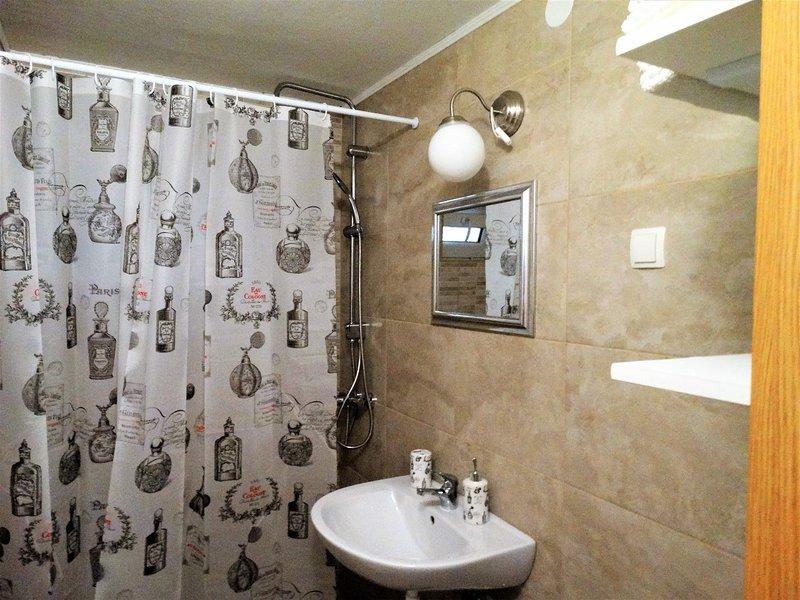 A1 Sasa (4): bagno con wc