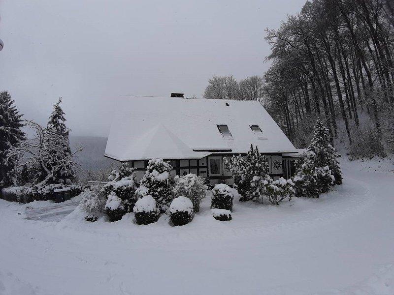 Heerlijke vakantiewoning in Sauerland, location de vacances à Langewiese