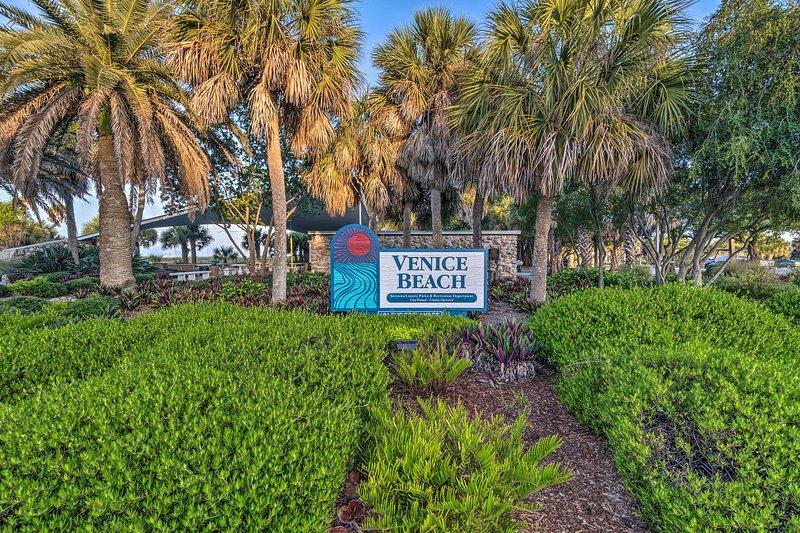 Chassez les dents de requin le long des rives de Venice Beach.