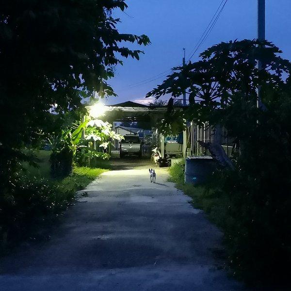 Une nuit avec la meute de Ban ObOun, vacation rental in Lan Sak