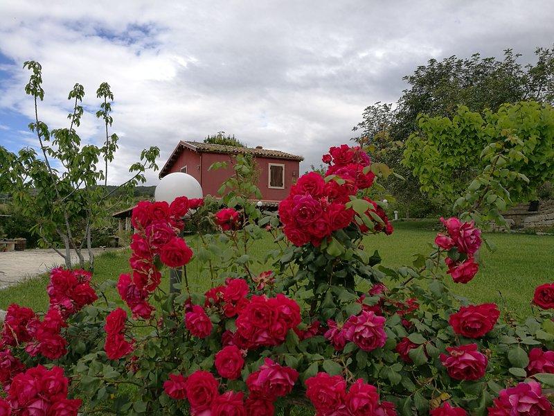Ceretanum Holiday House -Locazione turistica, vacation rental in Licodia Eubea