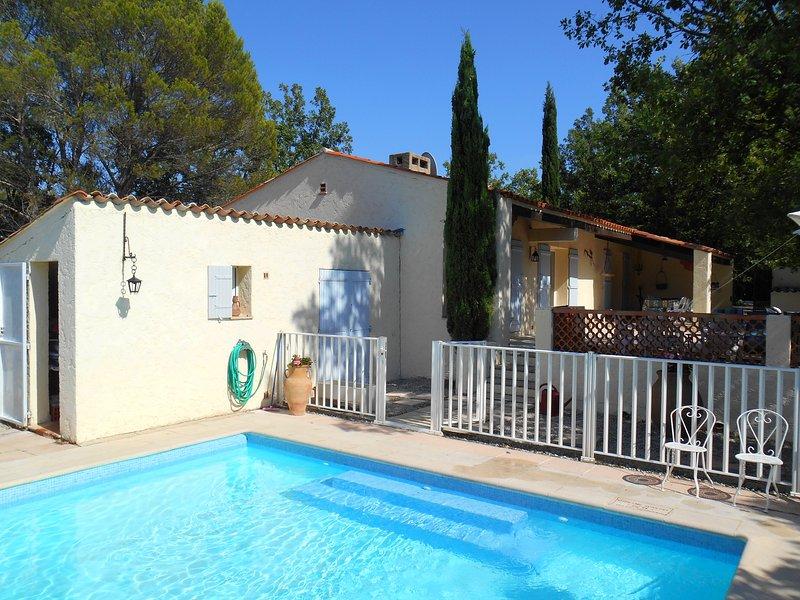 Big villa with swimming-pool, holiday rental in Saint-Paul-en-Foret