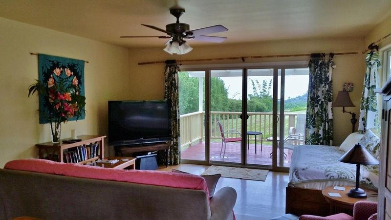 Large screen tv & Library.