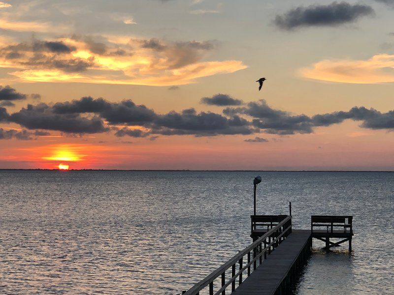 Dolphin's Point - House on Copano Bay, alquiler de vacaciones en Rockport