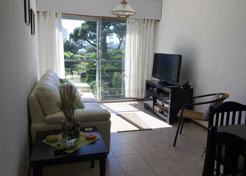 Apartment in residential area of Punta del Este, holiday rental in Punta del Este