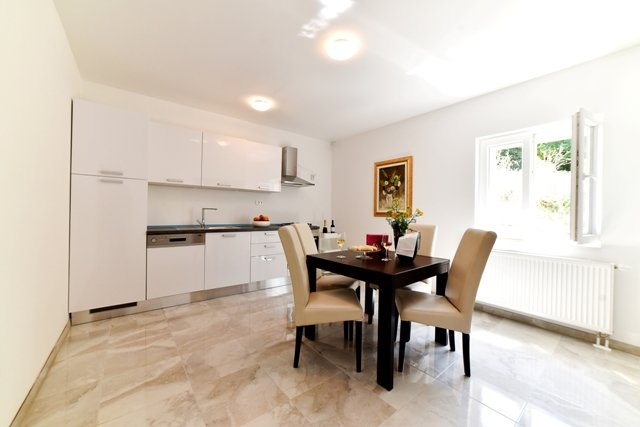Apartment Hertz, vacation rental in Velim