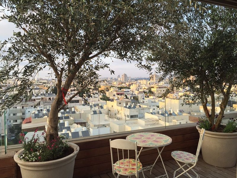 Amazing Penthouse with Pool, holiday rental in Tel Aviv