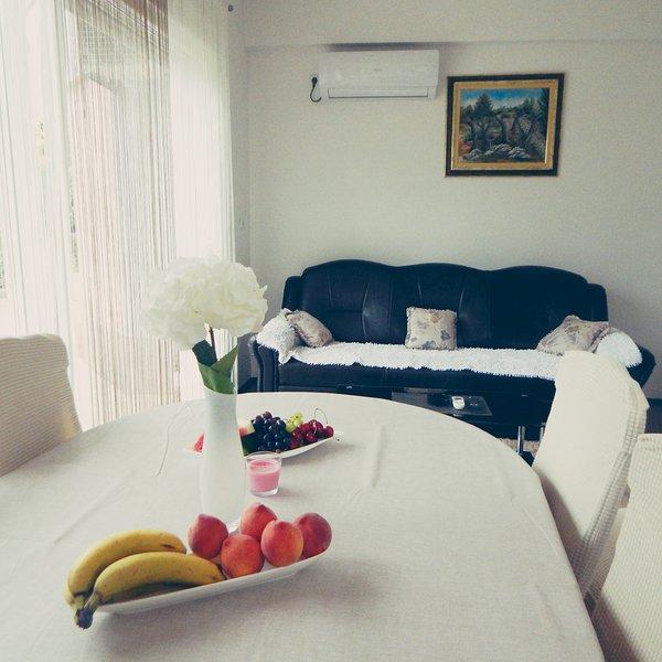 Hillside cozy Apartment, Imotski-Makarska, vacation rental in Velim