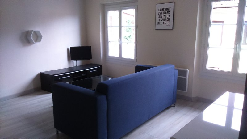 Nice apt in Albi & Wifi, vacation rental in Lescure-d'Albigeois