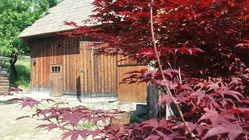 Pintea Cottage & Barn Accommodation - Bucovina, alquiler vacacional en Pojorata