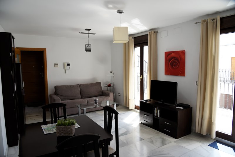 Nice last floor modern flat, 1 bedroom, location de vacances à Almaden de la Plata