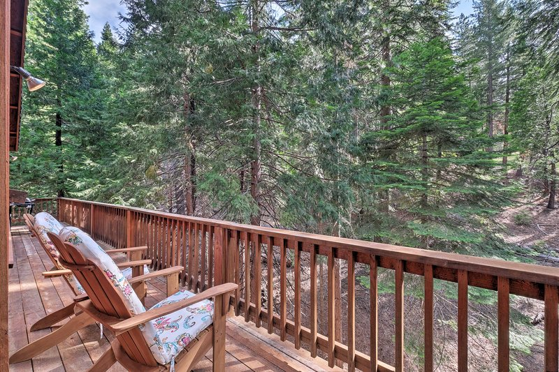 Spacious Cabin, Walk to Big Trees State Park!, location de vacances à Camp Connell