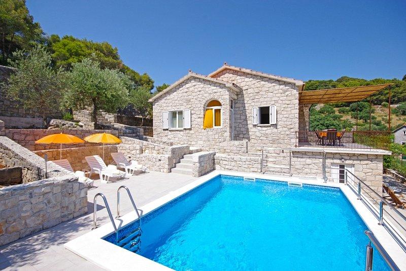 Tonko - open pool: H(4+1) - Postira, holiday rental in Dol