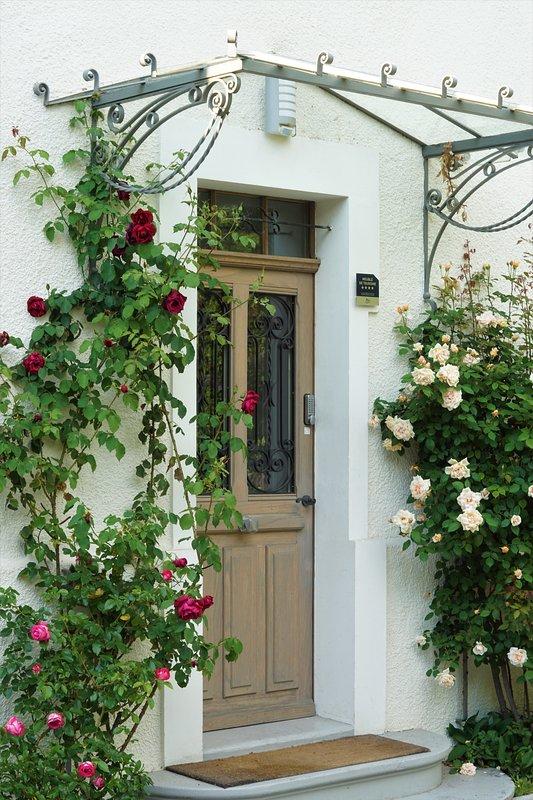 villa main entrance door
