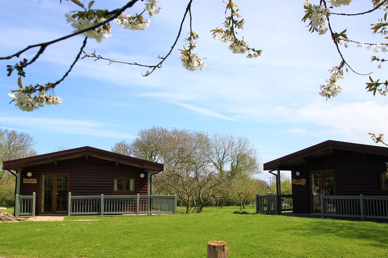 Accessible log cabin in the countryside (Dragonfly), location de vacances à Highbridge
