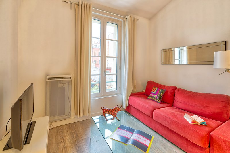 CARRE ST. PIERRE DUPLEX Hyper Centre, vacation rental in Toulouse