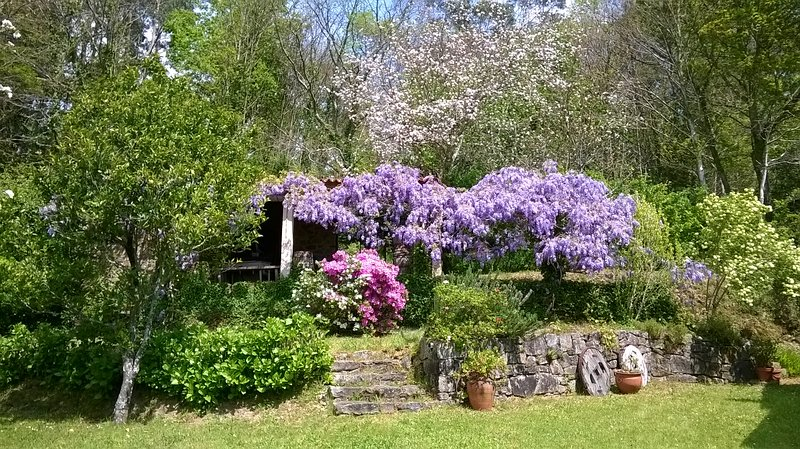 O Lughar Darriba Fogar Natural, holiday rental in Negreira