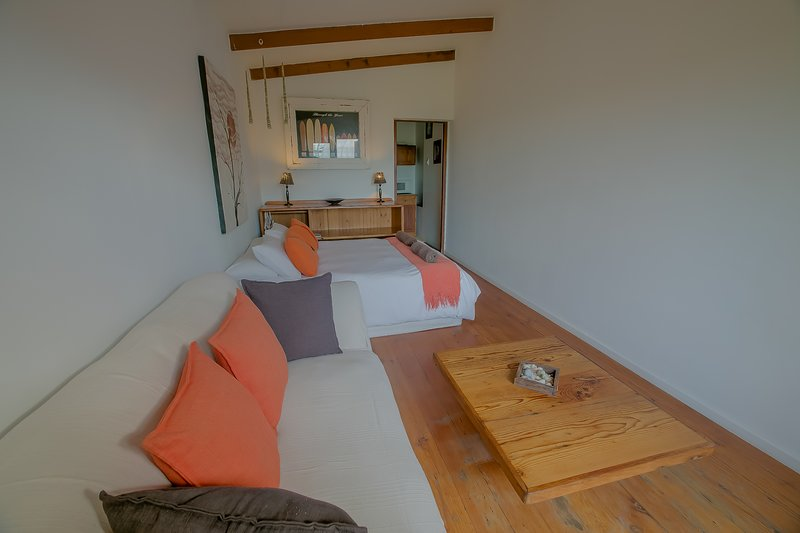 Beachfront Studio, holiday rental in Cape St Francis