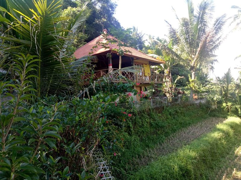 Babahan Farmstay | Wifi | Kitchen | Rice terraces view, vacation rental in Penebel