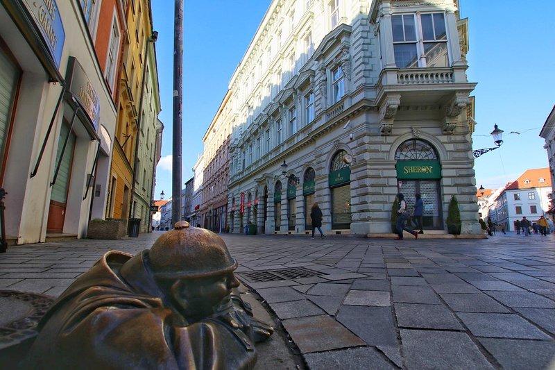 Historic Condo in the heart of Bratislava, holiday rental in Samorin