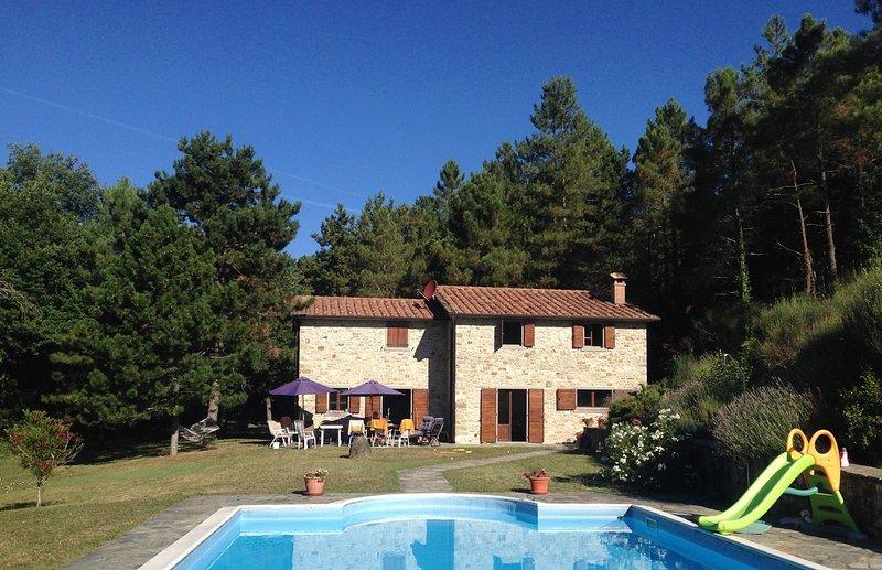 Large Private Villa & Pool, Casa Di Fondacci, near Arezzo, Tuscany, vacation rental in Caprese Michelangelo