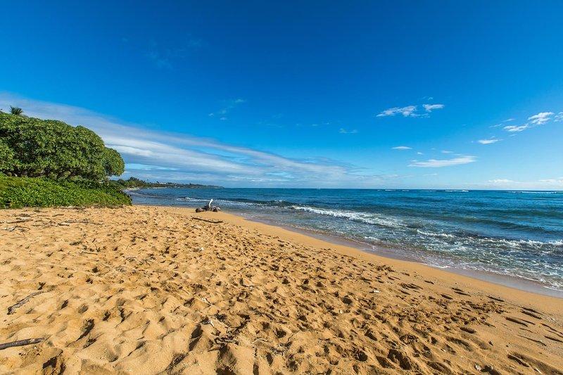 Waipouli Beach Front