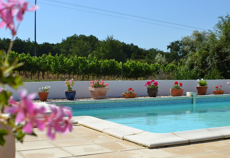 Le Mûrier gite at Cousserat, a peaceful holiday cottage with pool, vacation rental in Auriolles