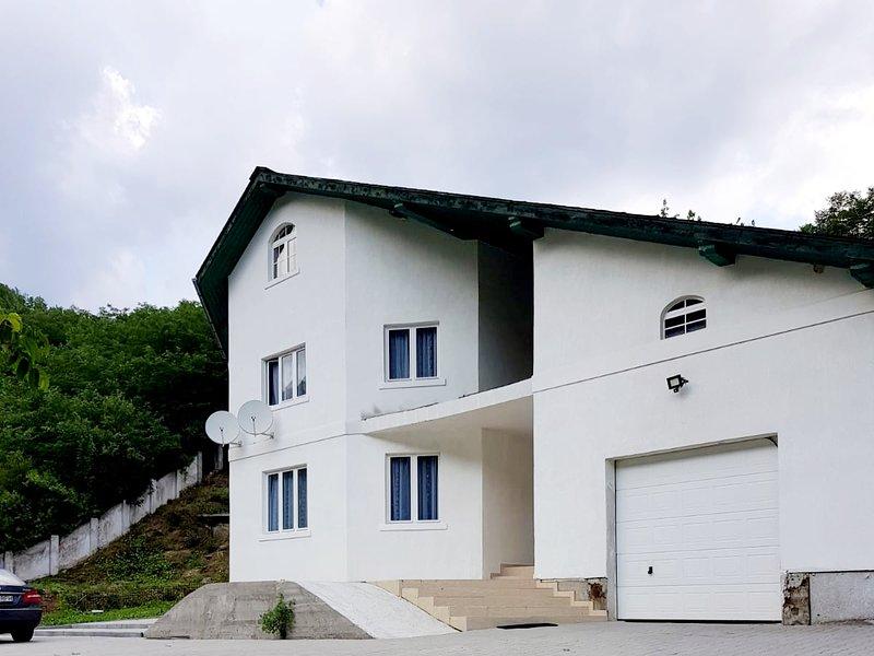 Vila Regina, holiday rental in Teius