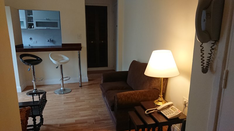 Living and access hall to the apartment